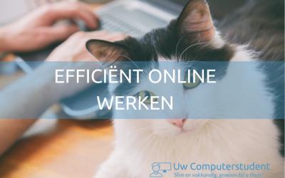 efficiënt online werken: 8 tips